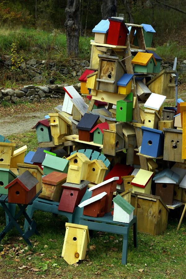Bird_houses3